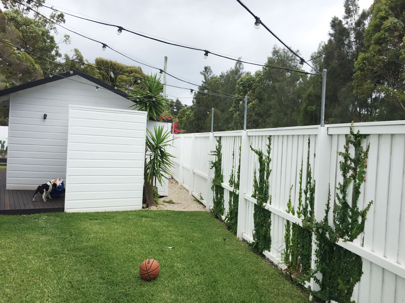 fence painting company northern beaches
